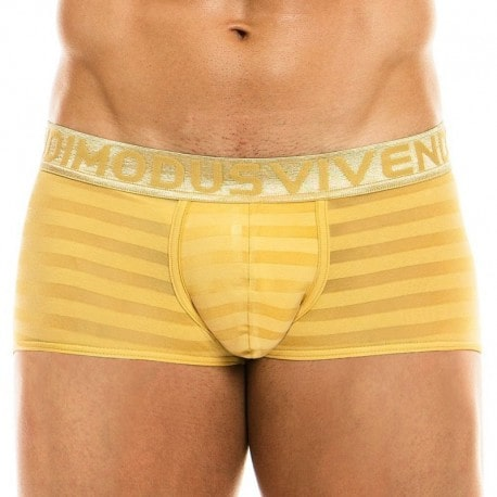 Modus Vivendi Boxer Golden Or
