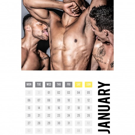 Andrew Christian 2020 Pits & Pubes Calendar